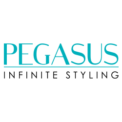 Storming Europe and the USA, <strong>Pegasus</strong> hairdressing combs redefine styling. Combined with revolutionary Flexinite technology, Pegasus is styling at its best. Flexinite Smart Comb Technology creates seamless teeth which are sensitive to changing temperatures, mimicking hair and flexibly moving in response to heat and chemicals. The result? No damage to hair.